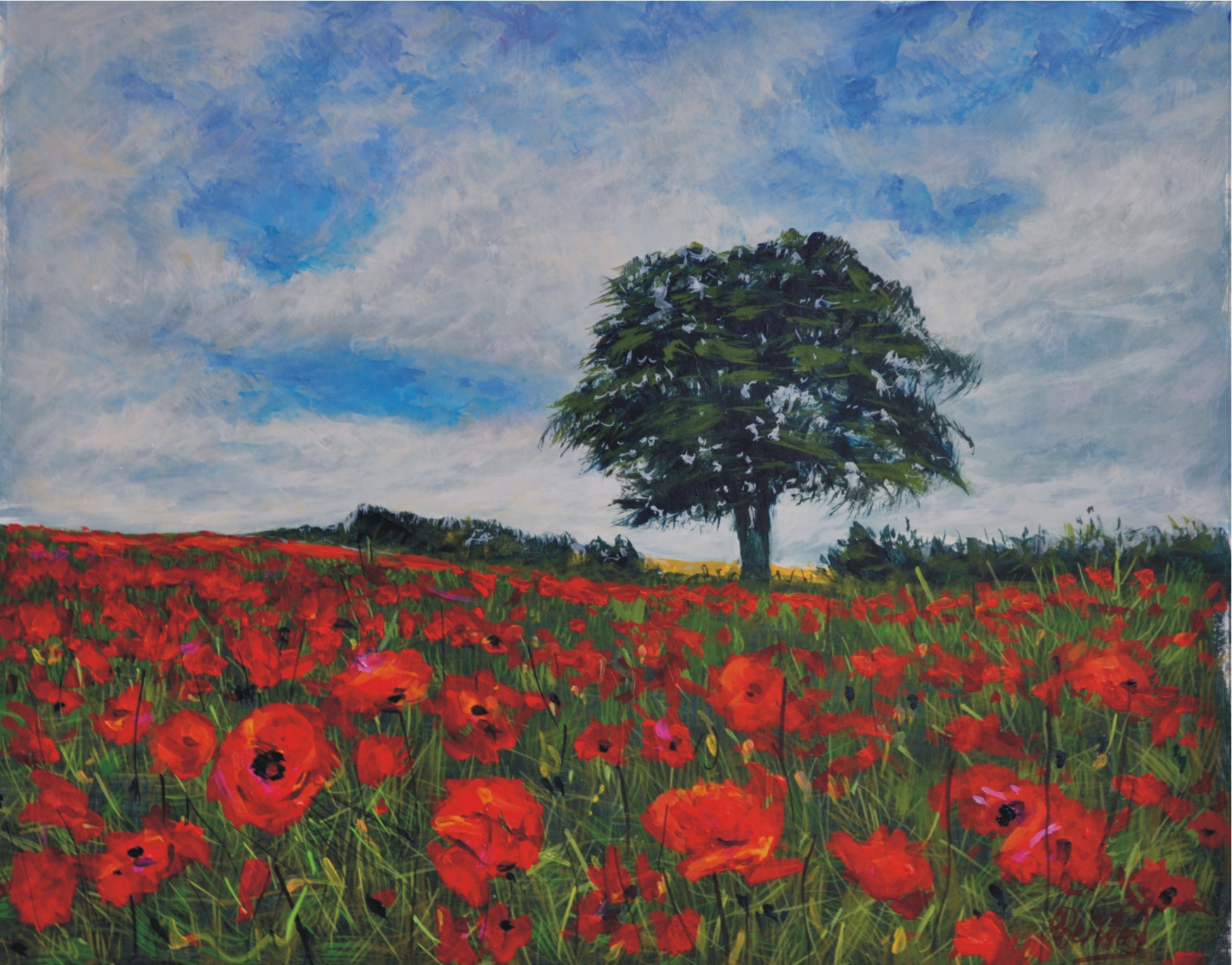 Lincolnshire poppies