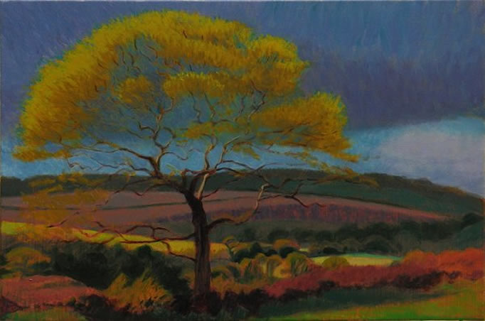 Oak tree above the valley SOLD