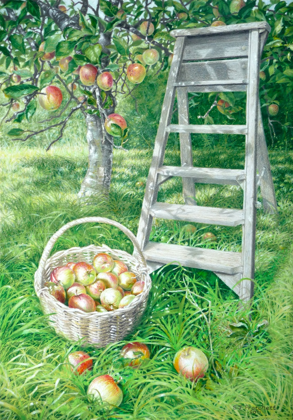 'Orchard at Little Oaks Tuckermarsh'