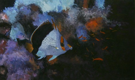 Yellow Crowned Butterfly Fish