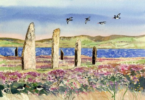 Oystercatchers and curlews at The Ring of Brodgar