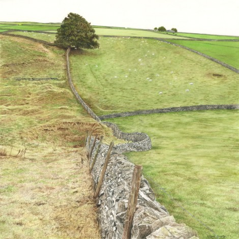 Walls at the top of Tansley Dale