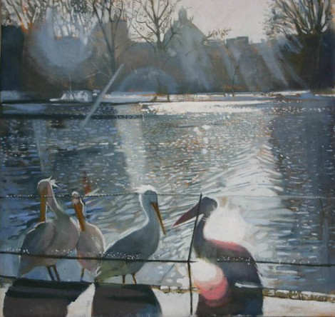 Pelicans in St James Park