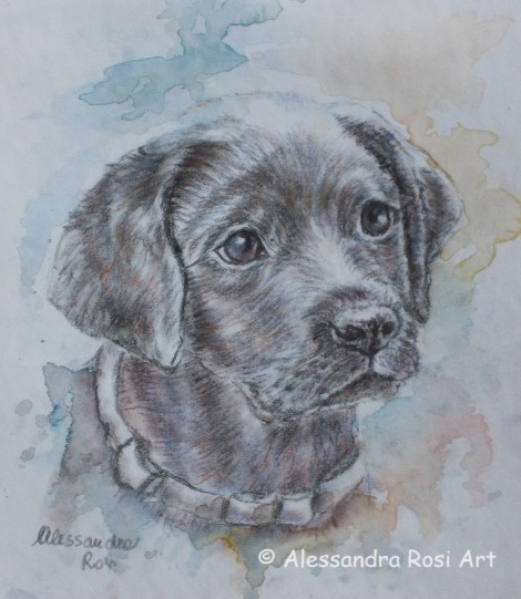 Dog portrait - Watercolour Painting