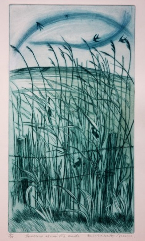 Swallows Above the Reeds drypoint