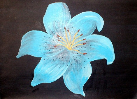 Blue Tiger Lily