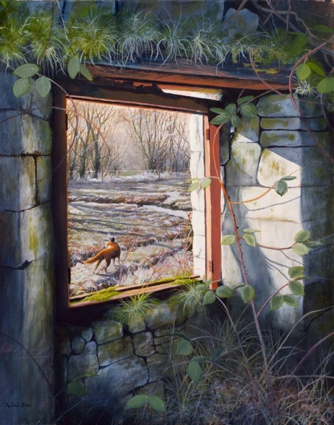 Fox through the Window