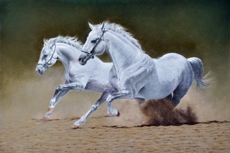 Galloping greys