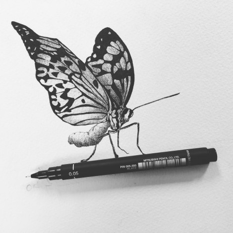 Theres a butterfly on my pen