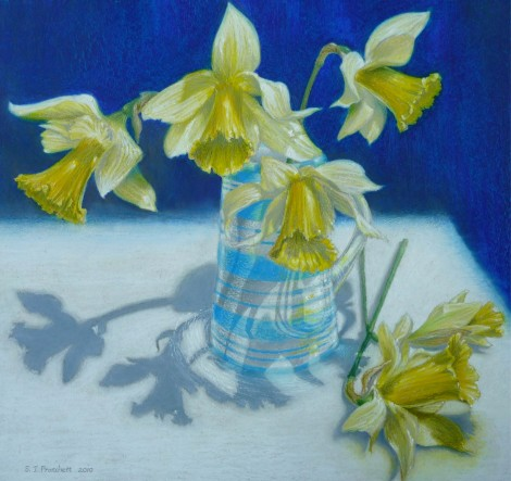 Daffodils in Blue Striped Jug
