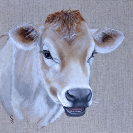 Jolly Jersey cow